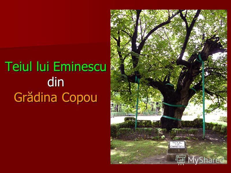 Obeliscul cu lei din centrul Grădinii (Parcului) Copou