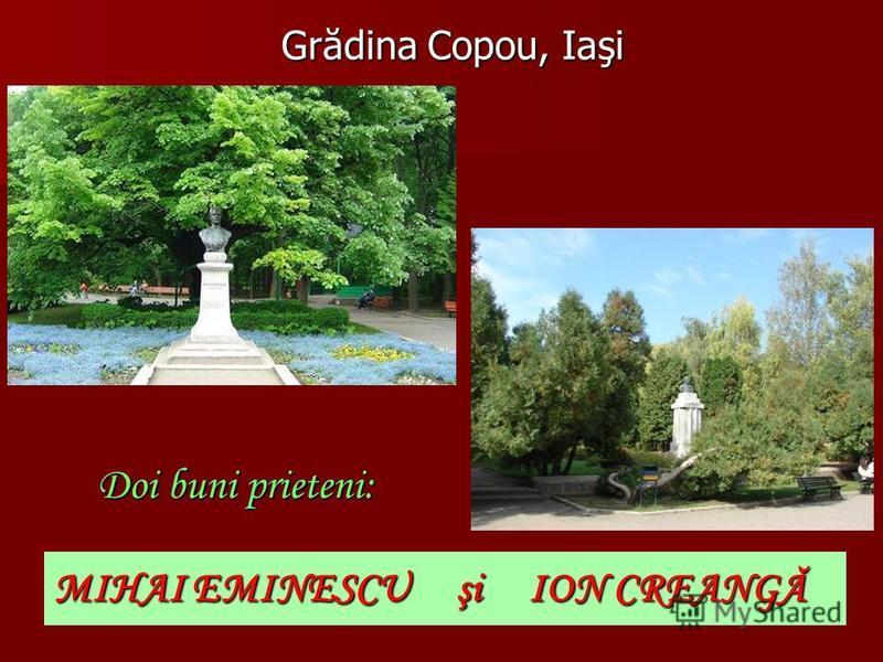 Teiul şi bustul lui Eminescu din Grădina Copou