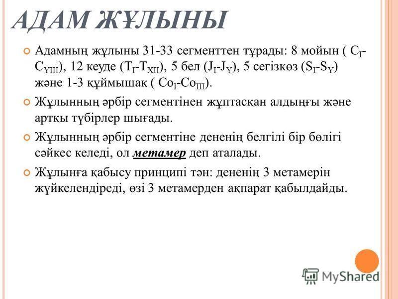 АДАМ ЖҰЛЫНЫ Адамның жұлины 31-33 сегменте тұрады: 8 мойын ( С І - С ҮІІІ ), 12 куеде (Т І -Т ХІІ ), 5 бел (J І -J Ү ), 5 сегізкөз (S І -S Ү ) және 1-3 құймышақ ( Со І -Со ІІІ ). Жұлынның әрбір сегментінен жұптасқан алдыңғы және артқы түбірлер шығады.