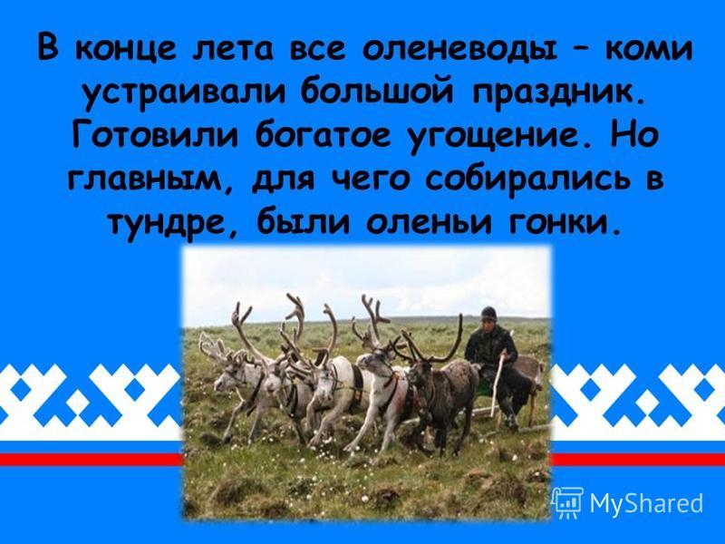 В конце лета все оленеводы – коми устраивали большой праздник. Готовили богатое угощение. Но главным, для чего собирались в тундре, были оленьи гонки.