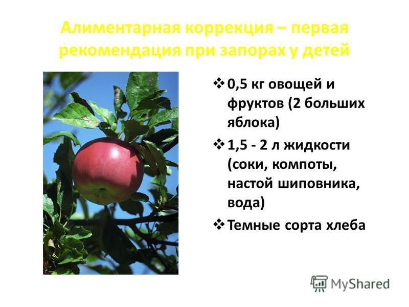 Алиментарная коррекция – первая рекомендация при запорах у детей 0,5 кг овощей и фруктов (2 больших яблока) 1,5 - 2 л жидкости (соки, компоты, настой шиповника, вода) Темные сорта хлеба