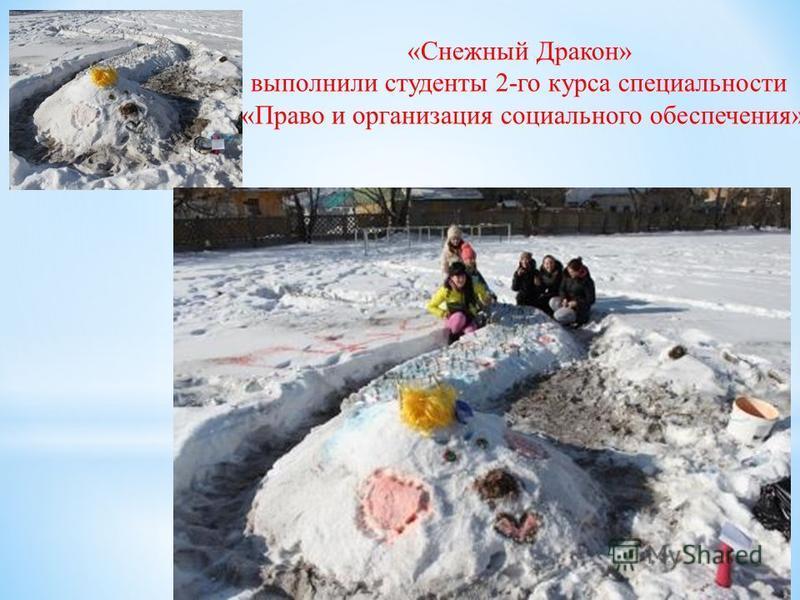 «Снежный Дракон» выполнили студенты 2-го курса специальности «Право и организация социального обеспечения»