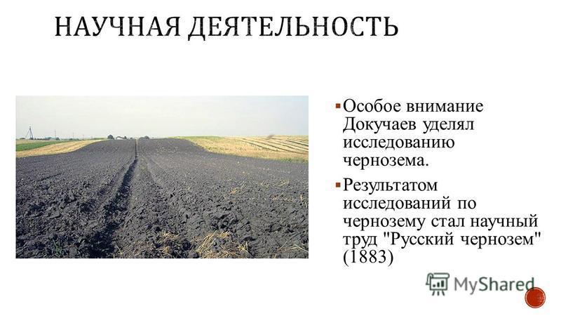 Особое внимание Докучаев уделял исследованию чернозема. Результатом исследований по чернозему стал научный труд Русский чернозем (1883)