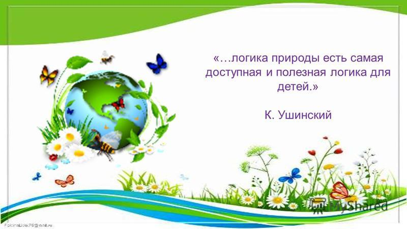 «…логика природы есть самая доступная и полезная логика для детей.» К. Ушинский
