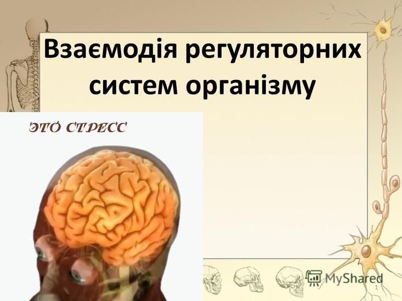 Взаємодія регуляторних систем організму 1