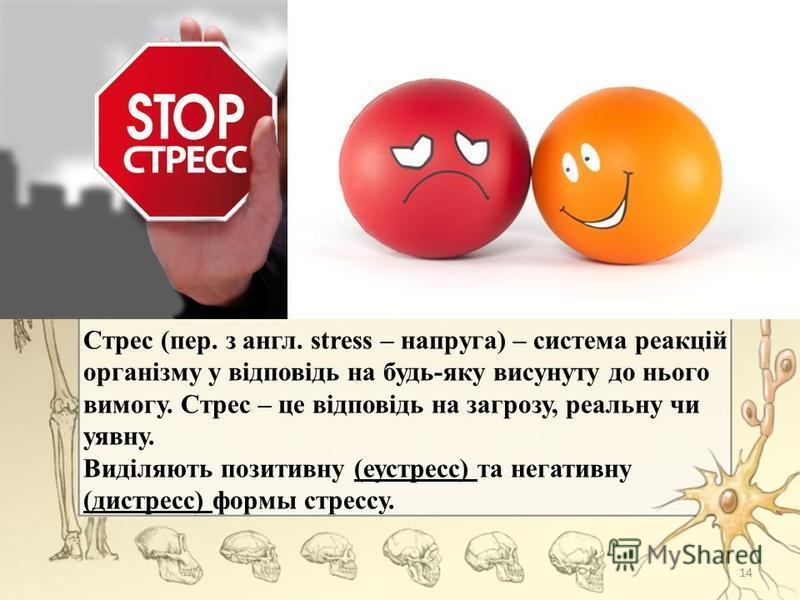 Стрес (пер. з англ. stress – напруга) – система реакцій організму у відповідь на будь-яку висунуту до нього вимогу. Стрес – це відповідь на загрозу, реальну чи уявну. Виділяють позитивну (еустресс) та негативну (дистресс) формы стрессу. 14