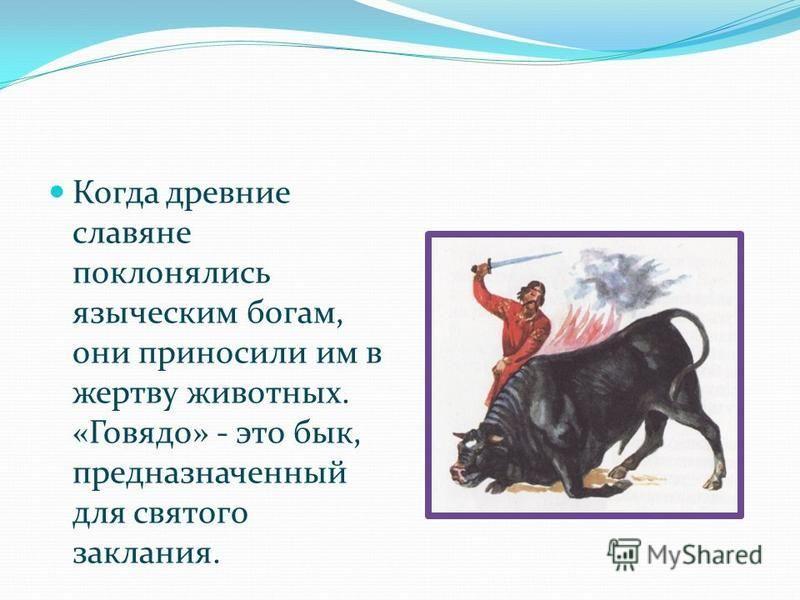 Когда древние славяне поклонялись языческим богам, они приносили им в жертву животных. «Говядо» - это бык, предназначенный для святого заклания.