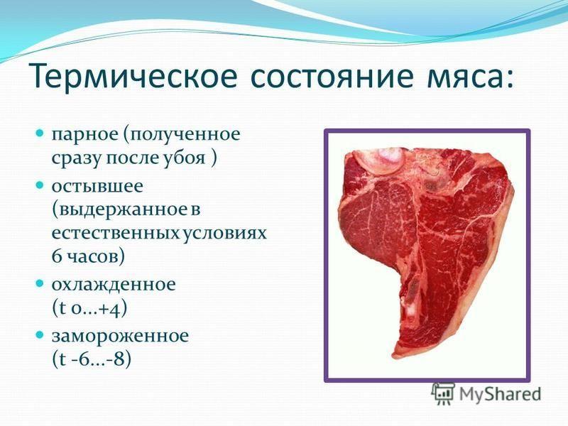 Термическое состояние мяса: парное (полученное сразу после убоя ) остывшее (выдержанное в естественных условиях 6 часов) охлажденное (t 0...+4) замороженное (t -6...-8)