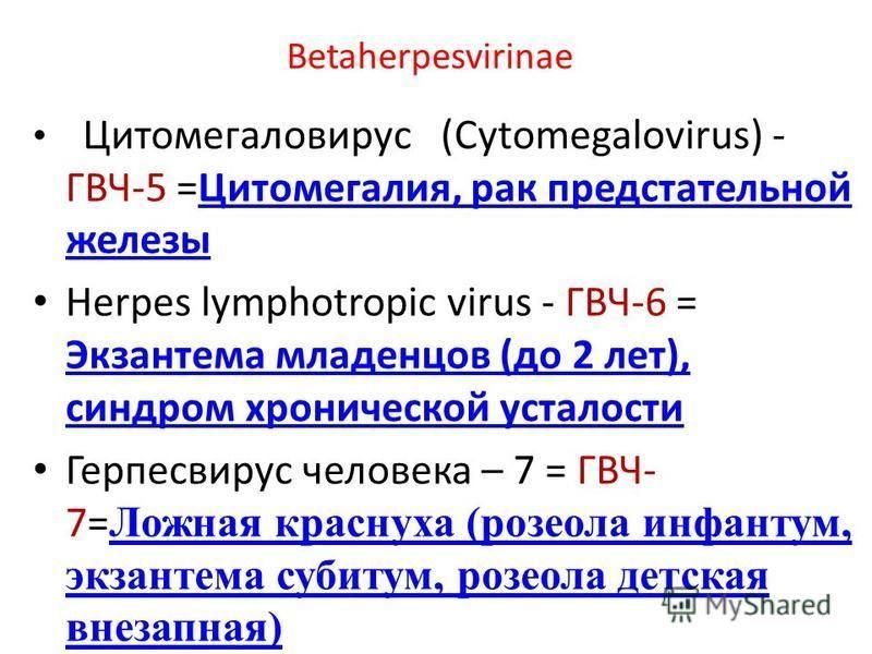 Betaherpesvirinae Цитомегаловирус (Cytomegalovirus) - ГВЧ-5 =Цитомегалия, рак предстательной железы Цитомегалия, рак предстательной железы Herpes lymphotropic virus - ГВЧ-6 = Экзантема младенцев (до 2 лет), синдром хронической усталости Экзантема мла