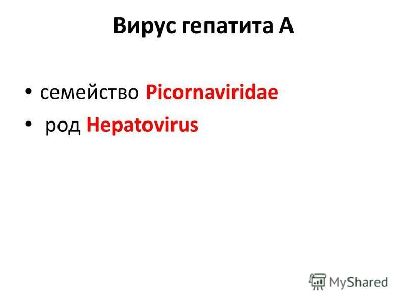 Вирус гепатита А семейство Picornaviridae род Hepatovirus