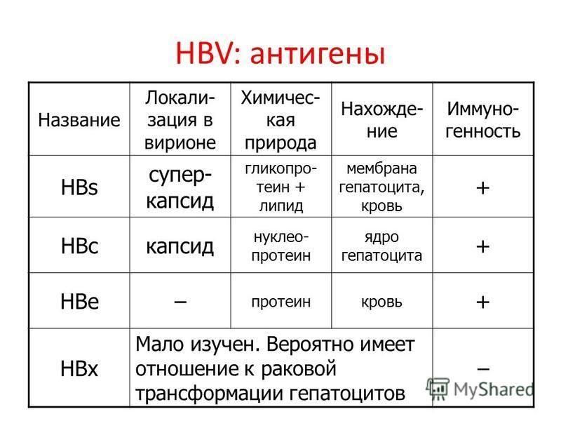 HBV: антигены Название Локали- зация в вирионе Химичес- кая природа Нахожде- ние Иммуно- генность HBs супер- капсид гликопро- теин + липид мембрана гепатоцита, кровь + HBcкапсид нуклео- протеин ядро гепатоцита + HBe– протеинкровь + HBx Мало изучен. В