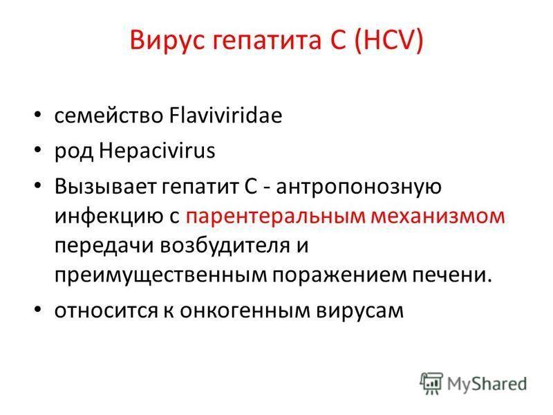 Вирус гепатита С (HCV) семейство Flaviviridae род Hepacivirus Вызывает гепатит С - антропонозную инфекцию с парентеральным механизмом передачи возбудителя и преимущественным поражением печени. относится к онкогенным вирусам