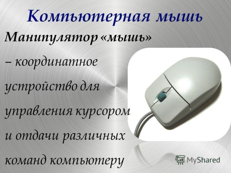 Манипулятор «мышь» – координатное устройство для управления курсором и отдачи различных команд компьютеру