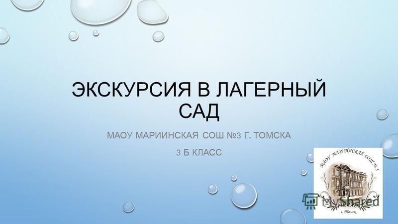 ЭКСКУРСИЯ В ЛАГЕРНЫЙ САД МАОУ МАРИИНСКАЯ СОШ 3 Г. ТОМСКА 3 Б КЛАСС