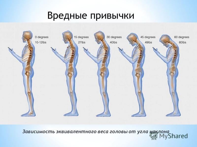 Зависимость эквивалентного веса головы от угла наклона Вредные привычки