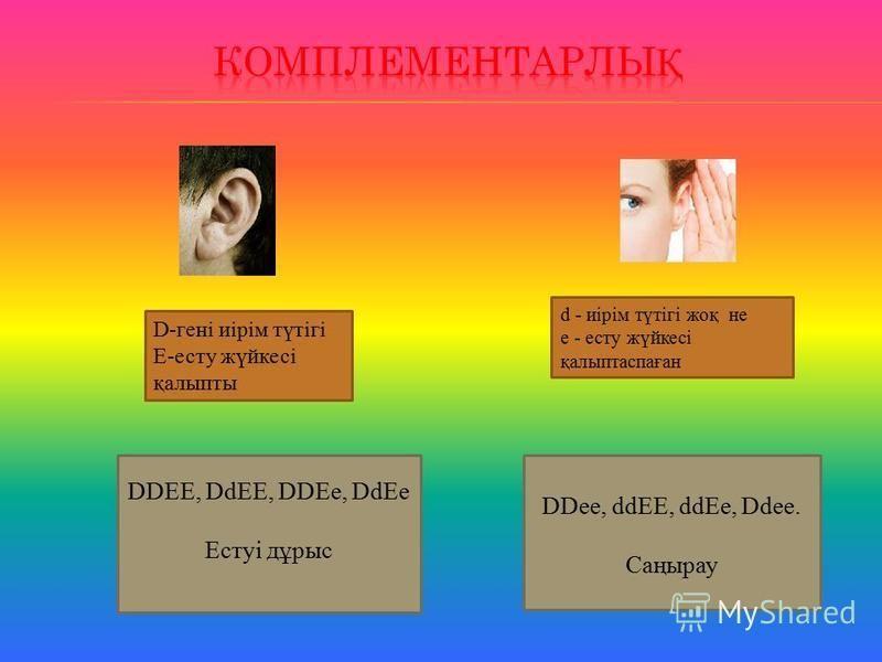 D-гені иірім түтігі Е-есту жүйкесі қалыпты DDEE, DdEE, DDEe, DdEe Естуі дұрыс DDее, ddEE, ddEe, Ddee. Саңырау d - иірім түтігі жоқ не е - есту жүйкесі қалыптаспаған