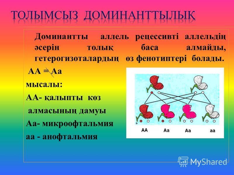 Доминантты аллель рецессивті аллельдің әсерін толық баса алмайды, гетерогизоталардың өз фенотиптері болады. АА = Аа мысалы: АА- қалыпты көз алмасының дамуы Аа- микроофтальмия аа - анофтальмия