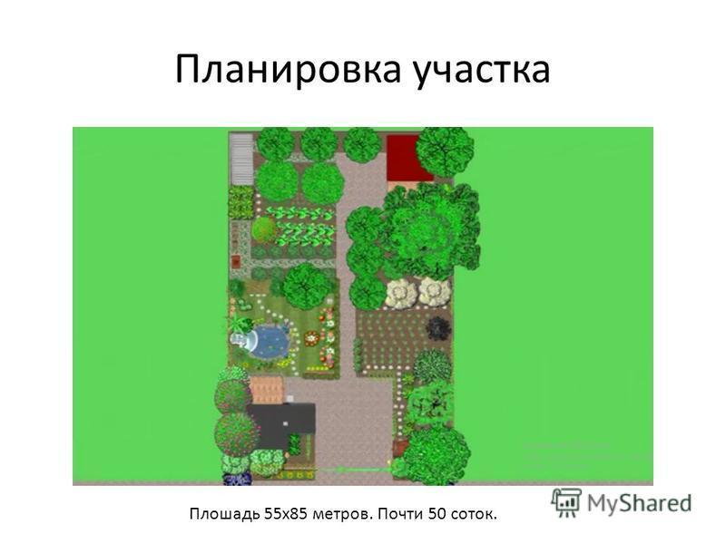 Планировка участка Плошадь 55 х 85 метров. Почти 50 соток.