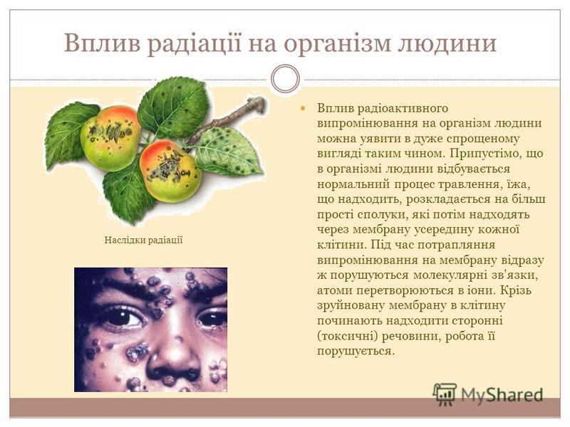 Вплив радіоактивного випромінювання на організм людини можна уявити в дуже спрощеному вигляді таким чином. Припустімо, що в організмі людини відбувається нормальний процес травлення, їжа, що надходить, розкладається на більш прості сполуки, які потім