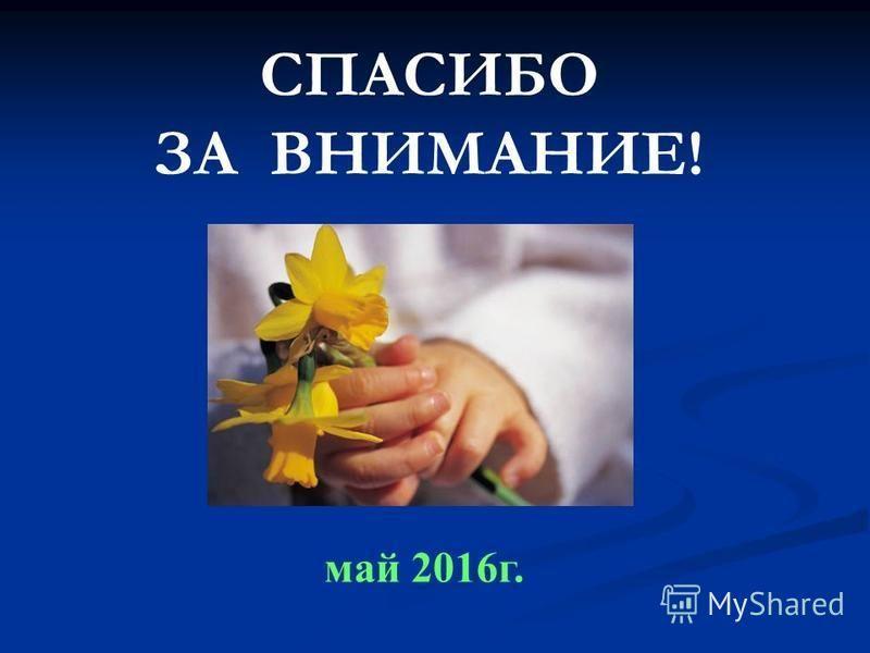 СПАСИБО ЗА ВНИМАНИЕ! май 2016 г.