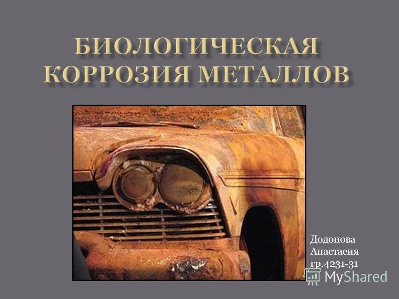 Додонова Анастасия гр.4231-31