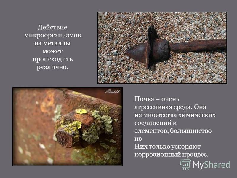 Действие микроорганизмов на металлы может происходить различно. Почва – очень агрессивная среда. Она из множества химических соединений и элементов, большинство из Них только ускоряют коррозионный процесс.