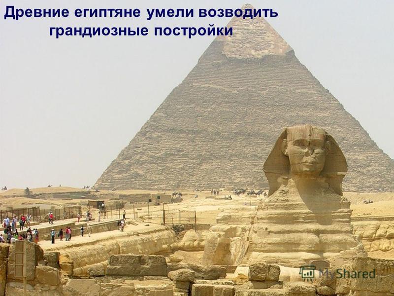 Древние египтяне умели возводить грандиозные постройки