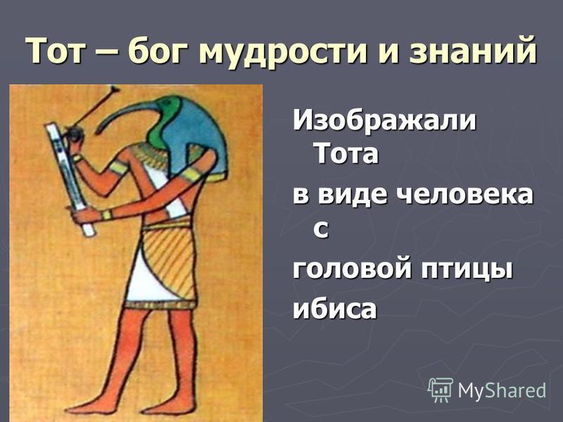 Тот – бог мудрости и знаний Изображали Тота в виде человека с головой птицы ибиса