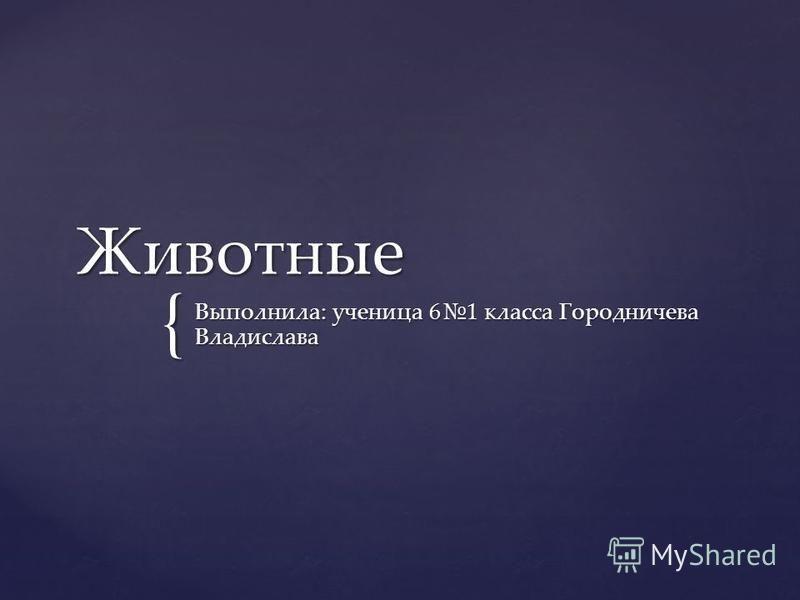 { Животные Выполнила: ученица 61 класса Городничева Владислава