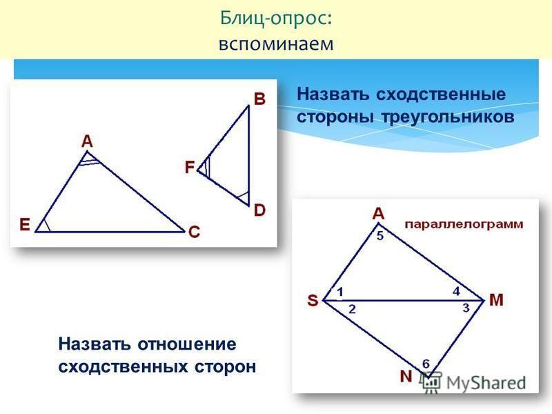 Блиц-опрос: вспоминаем Назвать сходственные стороны треугольников Назвать отношение сходственных сторон