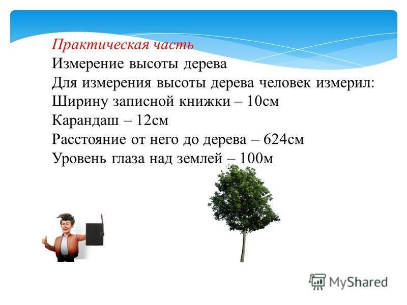 Практическая часть Измерение высоты дерева Для измерения высоты дерева человек измерил: Ширину записной книжки – 10 см Карандаш – 12 см Расстояние от него до дерева – 624 см Уровень глаза над землей – 100 м
