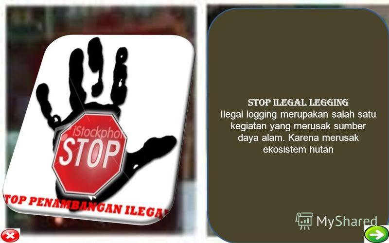 STOP ILEGAL LEGGING Ilegal logging merupakan salah satu kegiatan yang merusak sumber daya alam. Karena merusak ekosistem hutan