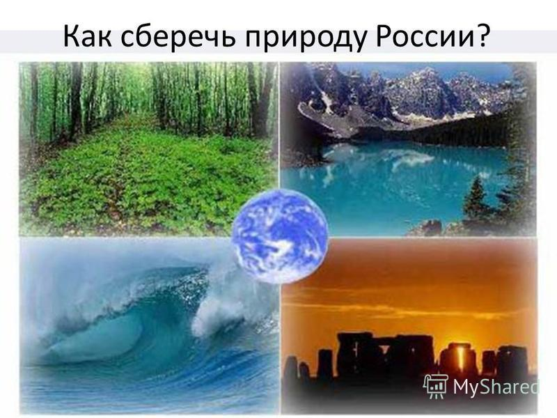 Как сберечь природу России?