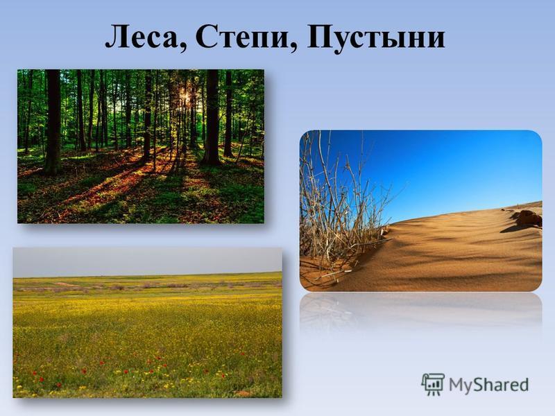 Леса, Степи, Пустыни