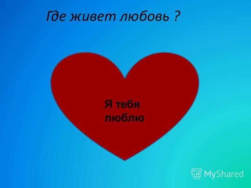 Где живет любовь ? Я тебя люблю