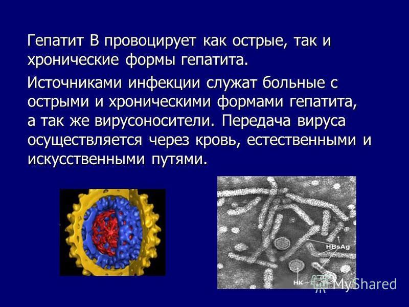 Гепатит В провоцирует как острые, так и хронические формы гепатита. Гепатит В провоцирует как острые, так и хронические формы гепатита. Источниками инфекции служат больные с острыми и хроническими формами гепатита, а так же вирусоносители. Передача в