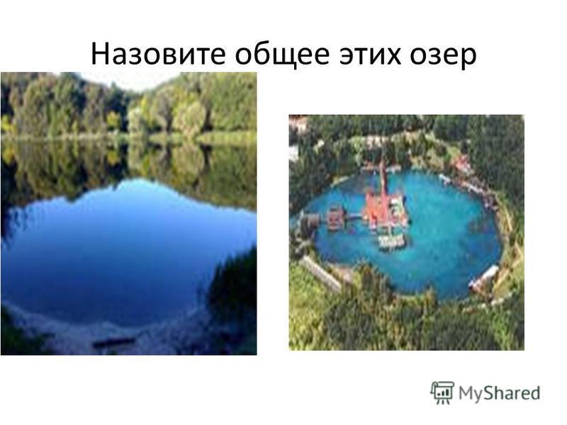 Назовите общее этих озер