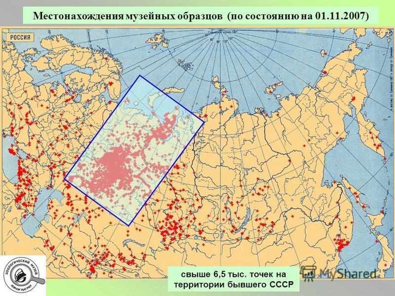 Местонахождения музейных образцов (по состоянию на 01.11.2007) свыше 6,5 тыс. точек на территории бывшего СССР