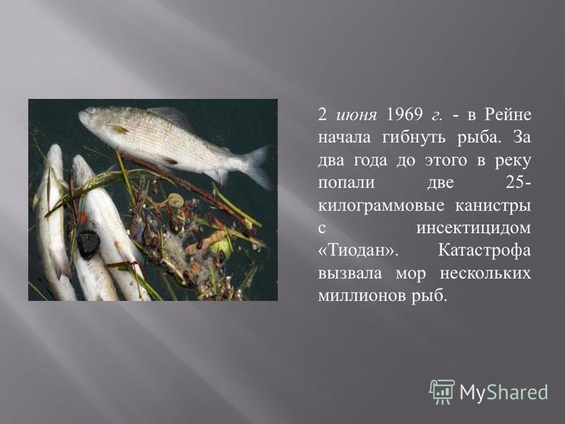 2 июня 1969 г. - в Рейне начала гибнуть рыба. За два года до этого в реку попали две 25- килограммовые канистры с инсектицидом « Тиодан ». Катастрофа вызвала мор нескольких миллионов рыб.