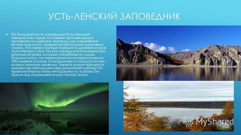 УСТЬ-ЛЕНСКИЙ ЗАПОВЕДНИК По большей части заповедник Усть-Ленский находится во льдах. Основные протоки дельты протекают по равнине Арктиды, где сохраняется вечная мерзлота, прикрытая небольшим грунтовым слоем. На северо-западе находится древний остров