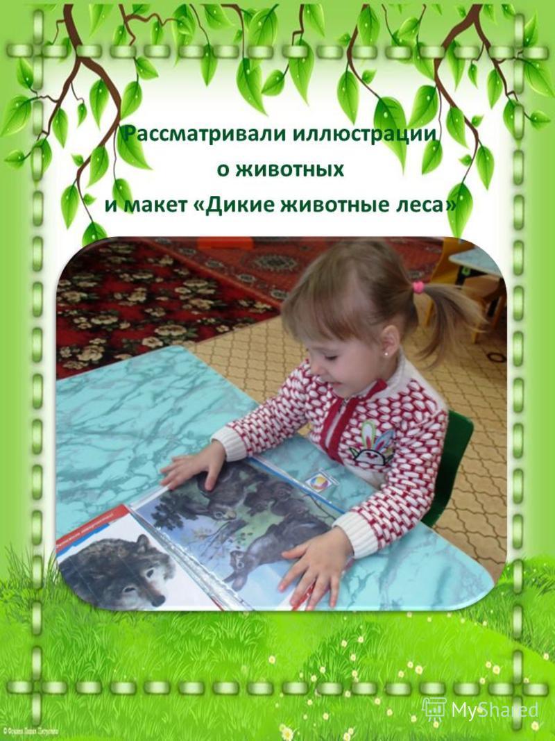Рассматривали иллюстрации о животных и макет «Дикие животные леса»