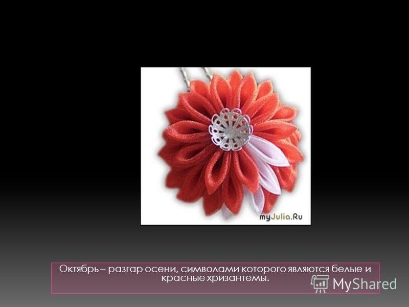 Октябрь – разгар осени, символами которого являются белые и красные хризантемы.