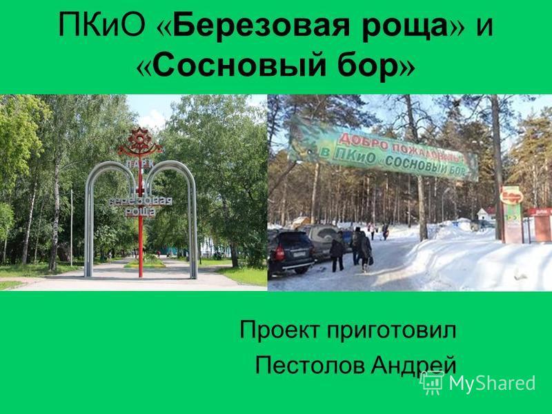 ПКиО « Березовая роща » и « Сосновый бор » Проект приготовил Пестолов Андрей
