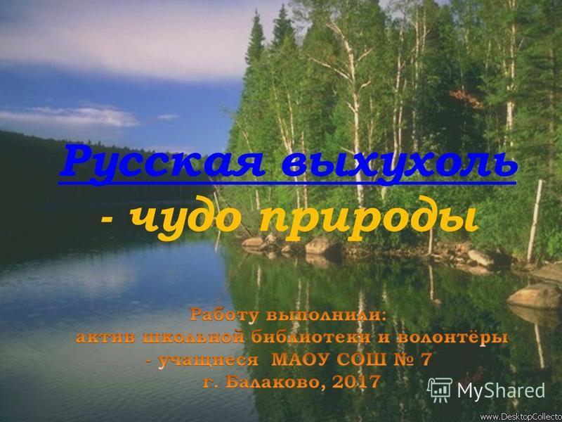 Русская выхухоль - чудо природы