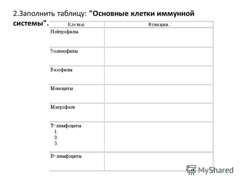 2. Заполнить таблицу: Основные клетки иммунной системы.