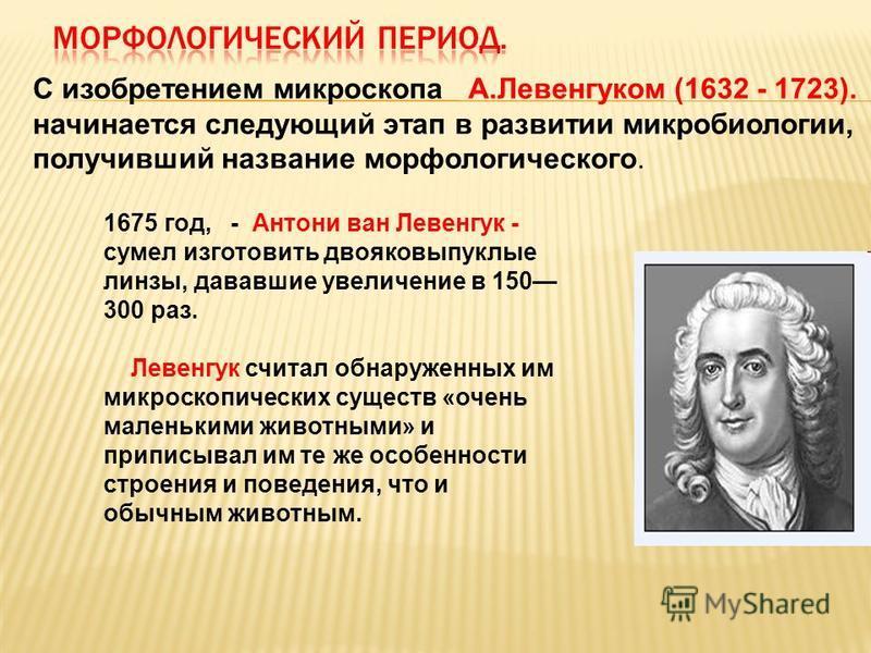 С изобретением микроскопа А.Левенгуком (1632 - 1723). начинается следующий этап в развитии микробиологии, получивший название морфологического. 1675 год, - Антони ван Левенгук - сумел изготовить двояковыпуклые линзы, дававшие увеличение в 150 300 раз