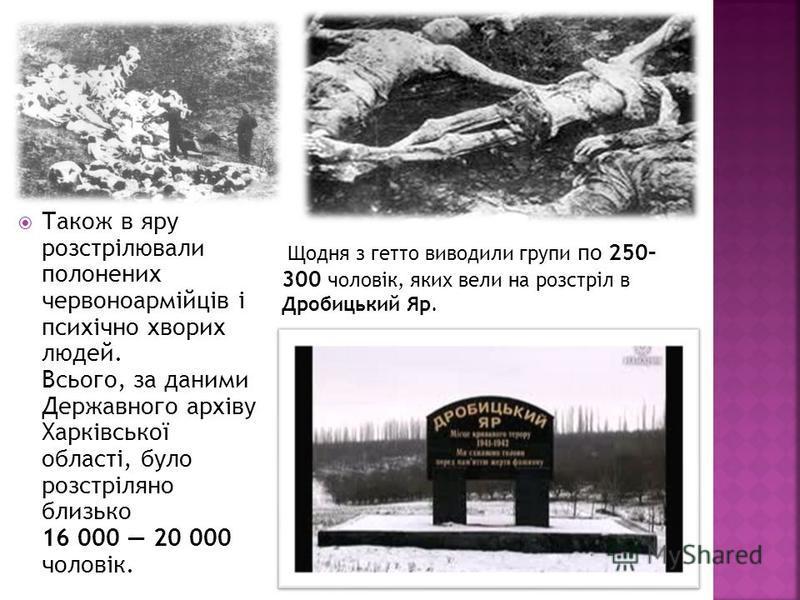 Також в яру розстрілювали полонених червоноармійців і психічно хворих людей. Всього, за даними Державного архіву Харківської області, було розстріляно близько 16 000 20 000 чоловік. Щодня з гетто виводили групи по 250– 300 чоловік, яких вели на розст