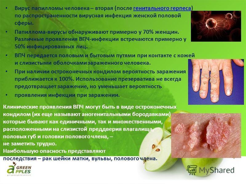 Вирус папилломы человека – вторая (после генитального герпеса) по распространенности вирусная инфекция женской половой сферы. Папиллома-вирусы обнаруживают примерно у 70% женщин. Различные проявления ВПЧ-инфекции встречаются примерно у 50% инфицирова