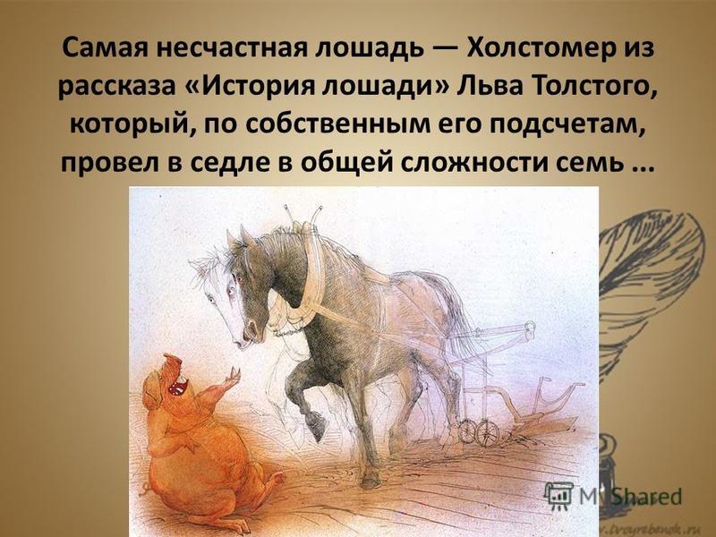 Самая несчастная лошадь Холстомер из рассказа «История лошади» Льва Толстого, который, по собственным его подсчетам, провел в седле в общей сложности семь...
