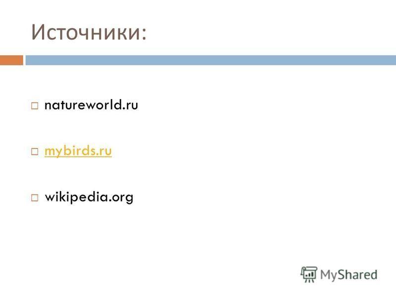 Источники : natureworld.ru mybirds.ru wikipedia.org